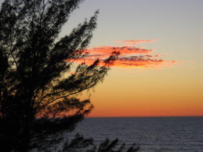 Florida gulf coast vacation rentals - view
